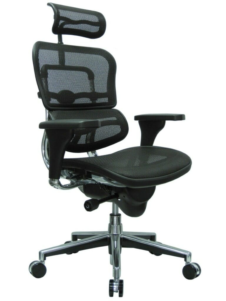 Ergohuman Mesh Ergonomic Chair