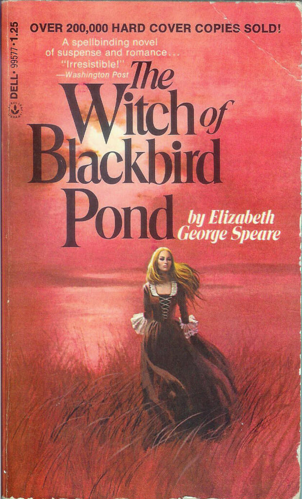 a summary of the book the witch of blackbird pond by elizabeth george speare