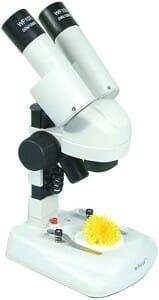Microscope 4