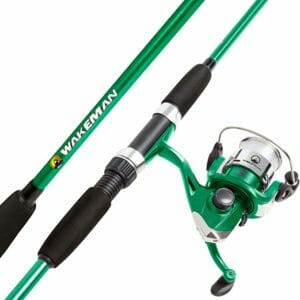 Wakeman Top Ten Best Fishing Rods