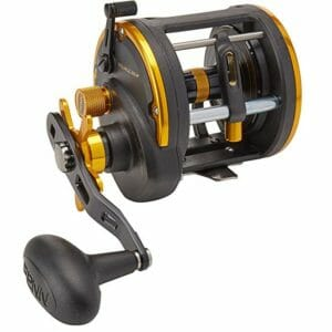 Penn Top Ten Saltwater Reels
