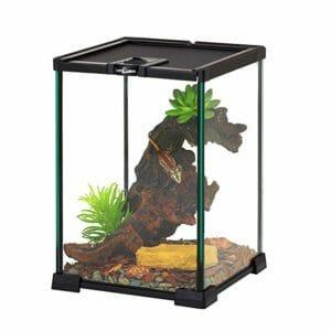Repti Zoo 2 Top Ten Best Terrariums for Pets