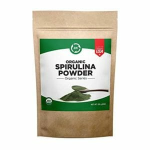 BN Labs Top Ten Spirulina Powder