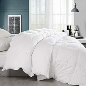 Balichun Top Ten Queen Size Down and Down Alternative Comforters