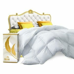 Cocoon Comfort Top Ten Queen Size Down and Down Alternative Comforters