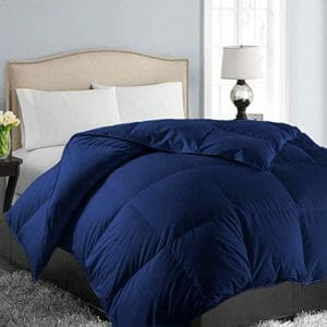 Easeland Top Ten Full-Size Down and Down Alternative Comforters