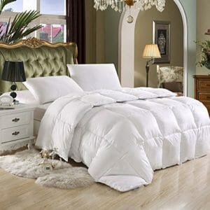 Egyptian Bedding 2 Top Ten Twin Size Down and Down Alternative Comforters