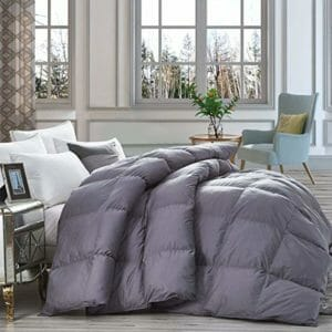 Egyptian Bedding Top Ten Full-Size Down and Down Alternative Comforters