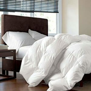 Egyptian Bedding Top Ten Twin Size Down and Down Alternative Comforters