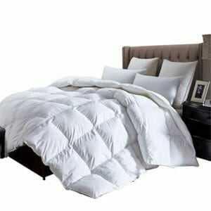 Egyptian Cotton Factory Outlet Store Top Ten Queen Size Down and Down Alternative Comforters