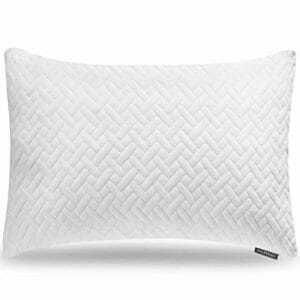 Hoperay Top Ten Bed Pillows