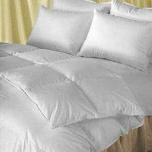 Natural Comfort Top Ten Full-Size Down and Down Alternative Comforters