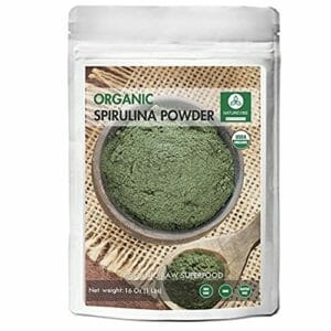 Naturevibe Botanicals Top Ten Spirulina Powder
