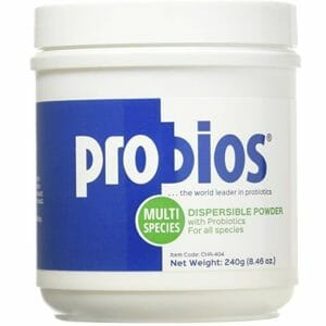 Probios Top Ten Probiotic Powder