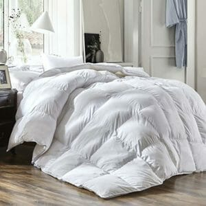 Three Geese Top Ten Twin Size Down and Down Alternative Comforters