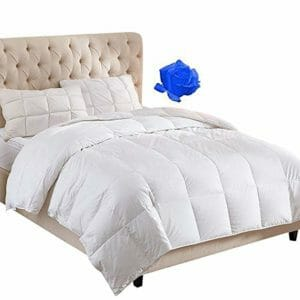 WhatsBedding Top Ten Queen Size Down and Down Alternative Comforters