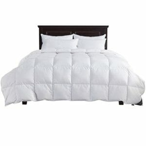 puredown Top Ten Full-Size Down and Down Alternative Comforters