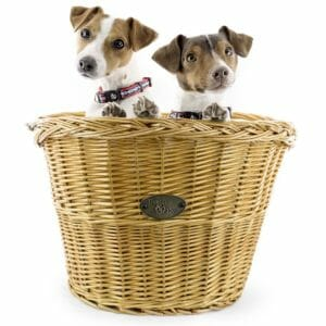 Beach & Dog Company Top 10 Best Bike Carriers For Dogs