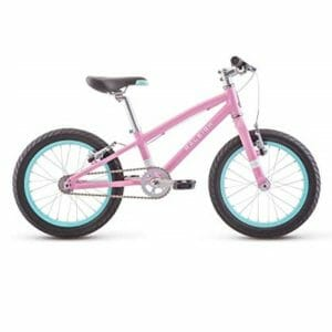 Raleigh 2 Top 10 Best Mountain Bikes for Kids