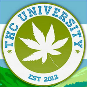 THC University Top 10 Best Cannabis Education Programs