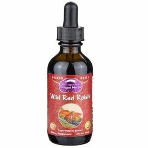Dragon Herbs Top 10 Best Reishi Mushroom Tinctures
