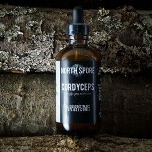 North Spore Top 10 Best Cordyceps Mushroom Tinctures