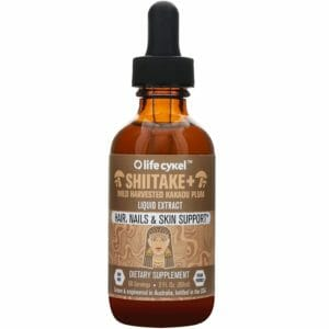 Life Cykle Top Six Best Shiitake Mushroom Tinctures